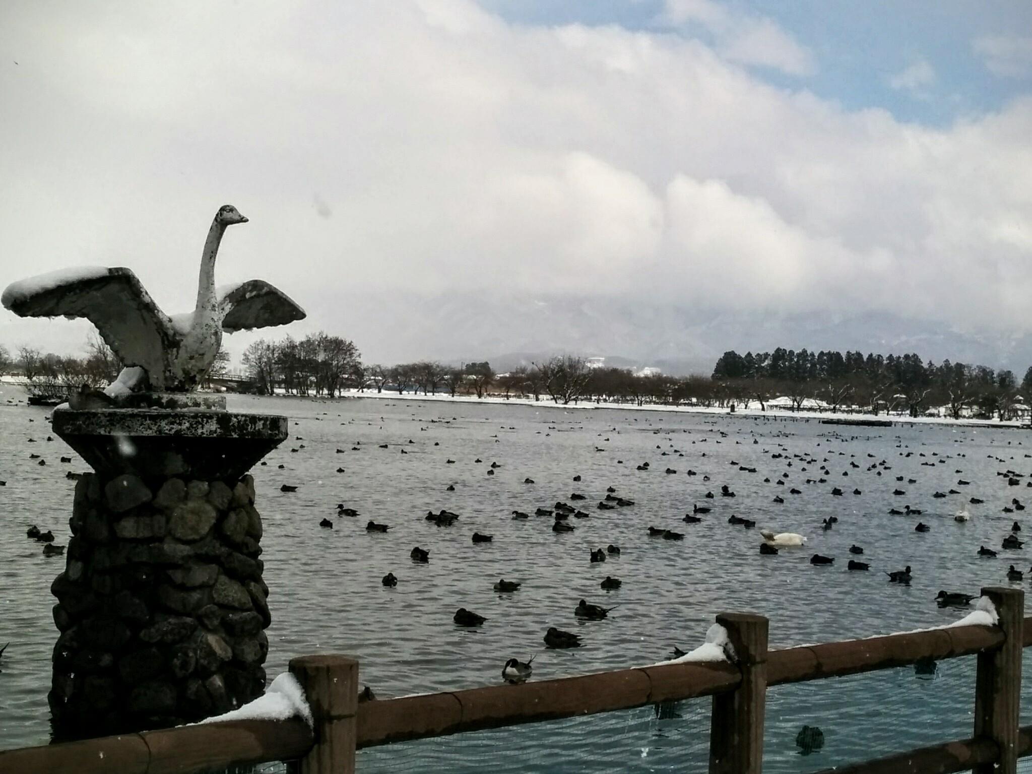 瓢湖0207 1