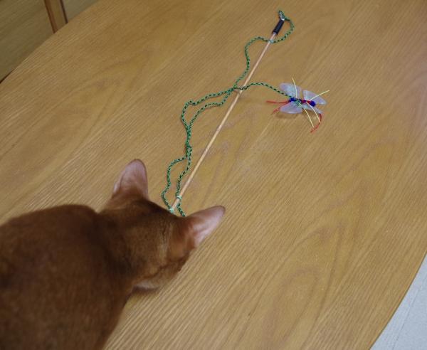 釣り竿おもちゃ