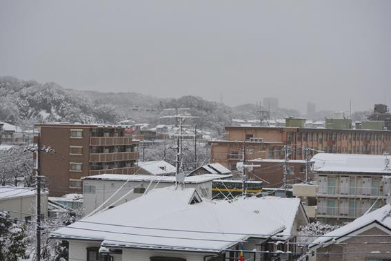 160118 雪01