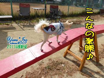 yuruiro20151031_k001
