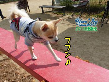 yuruiro20151031_k002