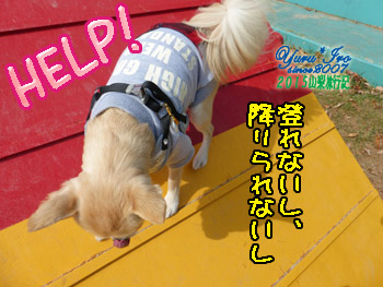 yuruiro20151031_k004