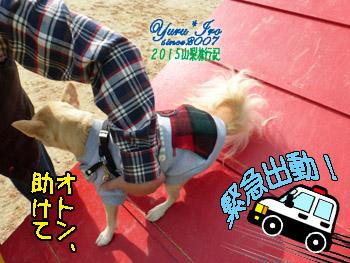 yuruiro20151031_k005