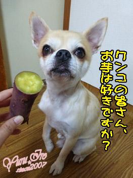 yuruiro20151027_k002
