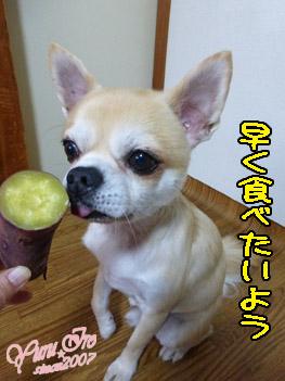 yuruiro20151027_k003