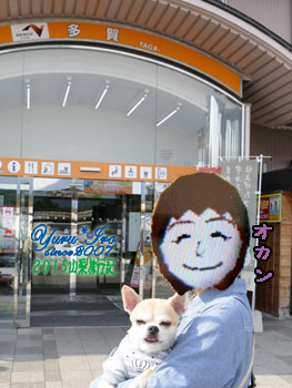 yuruiro20151030_01_k003