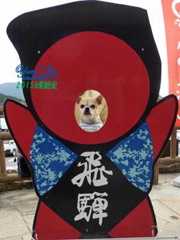 yuruiro20151030_sarubobo_004