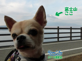 yuruiro20151101_01_k004