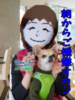 yuruiro20151101_01_k006