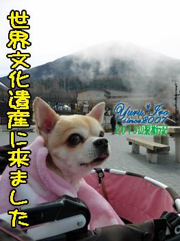 yuruiro20151101_02_001