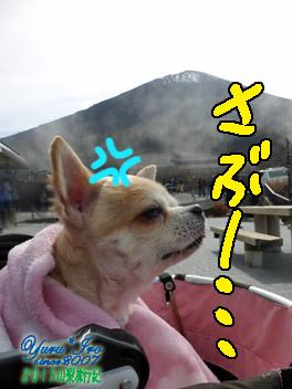yuruiro20151101_02_002