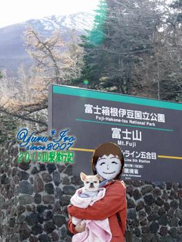 yuruiro20151101_02_003