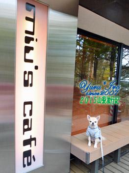 yuruiro20151101_02_k006