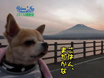 yuruiro20151101_05_k002