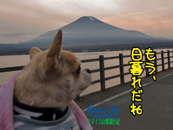 yuruiro20151101_05_k003