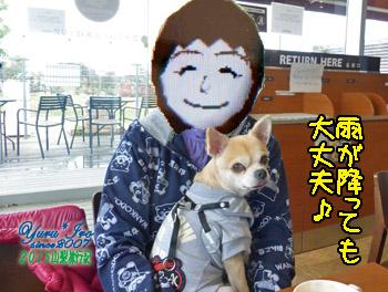 yuruiro20151102_k007