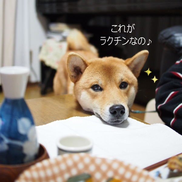 20151214-005.png