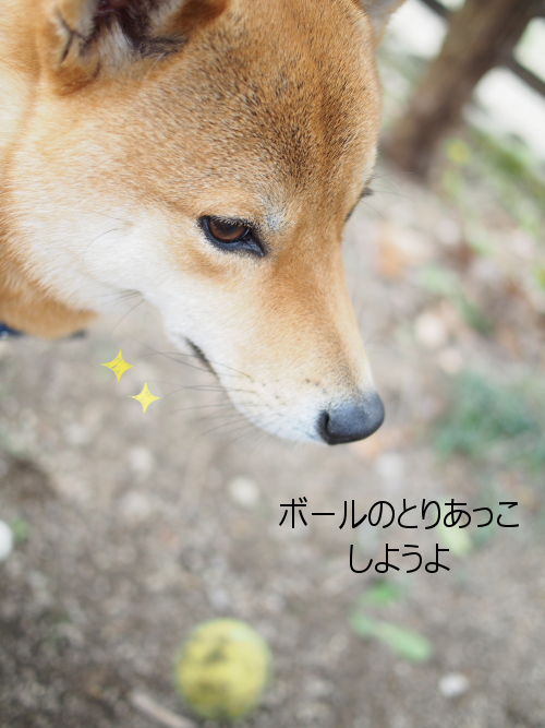 20160113-005.png