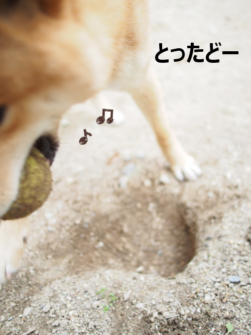20160116-003.png