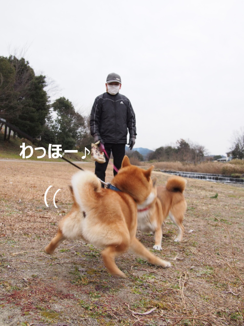 20160123-005.png