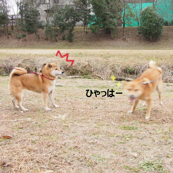20160123-008.png
