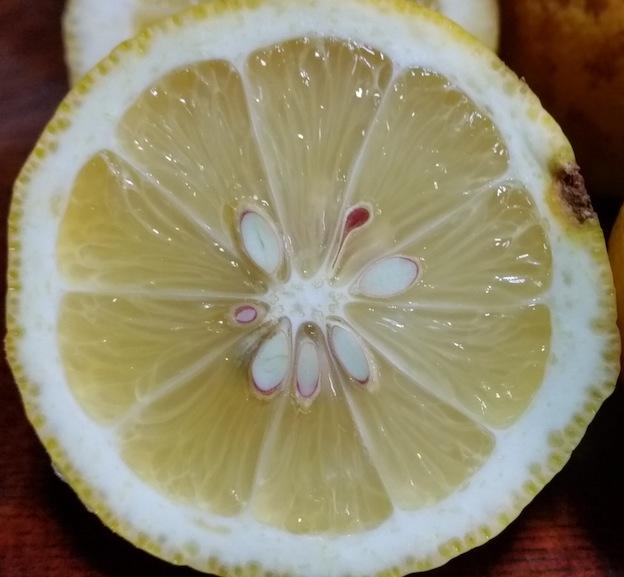 凍ってないレモン