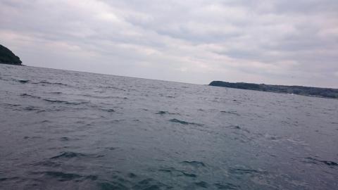 ボートエギング5