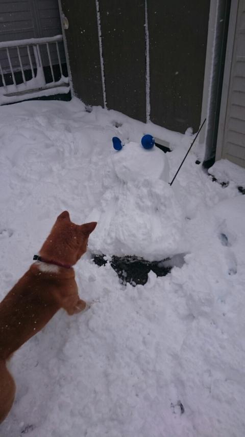 雪だるま破壊2