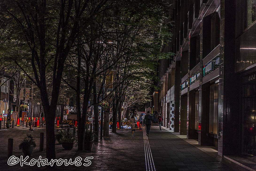 静かな丸の内仲通りを歩く 20151024