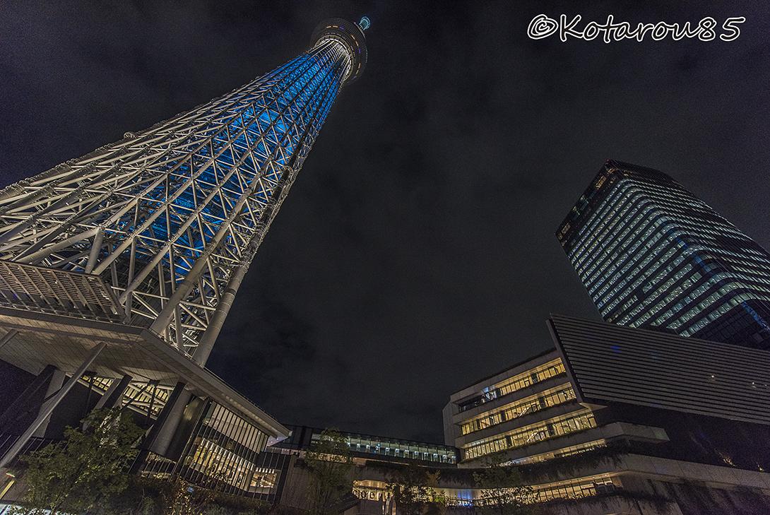 スカイツリー全景 20151031