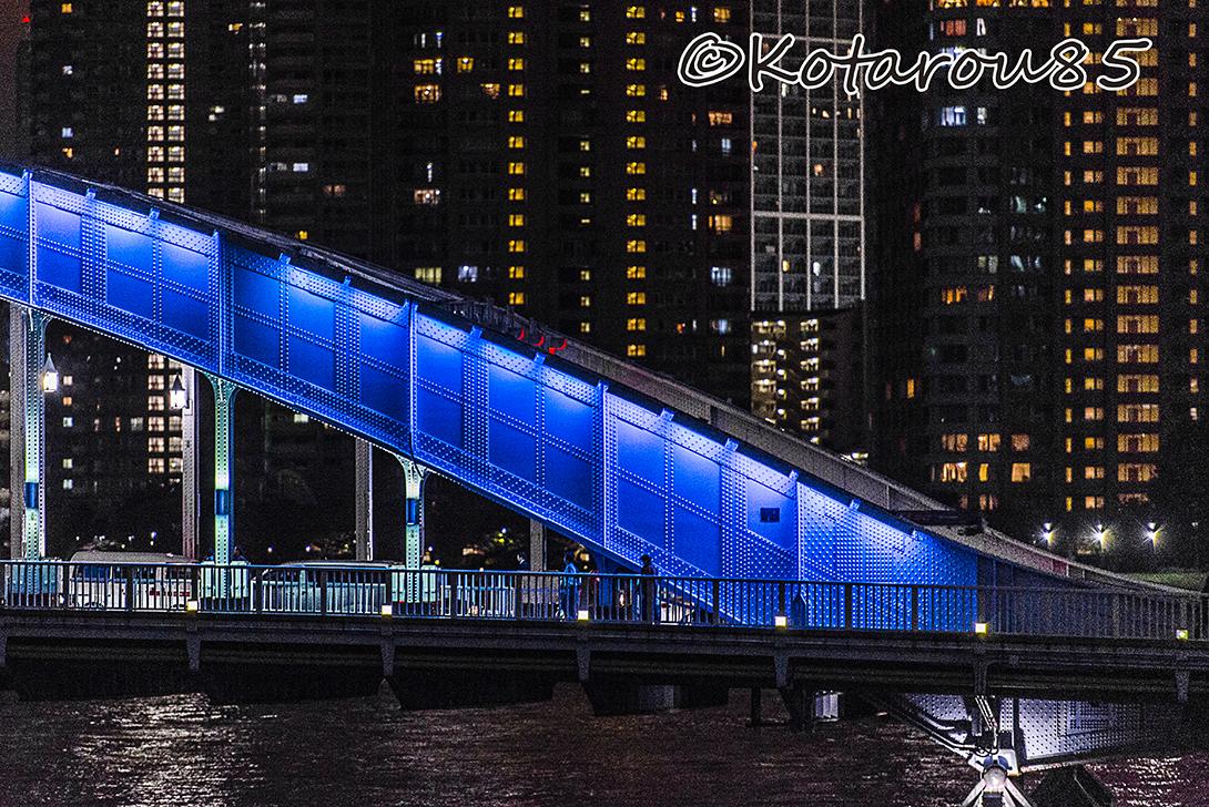 永代橋夜景 20151121