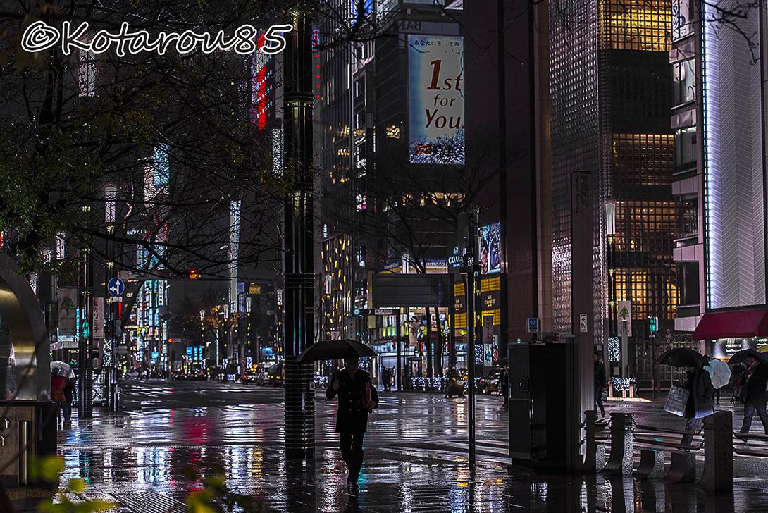 師走の雨 20151224