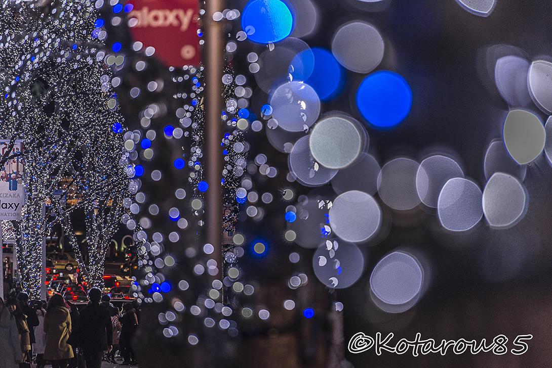 六本木けやき坂 20151226