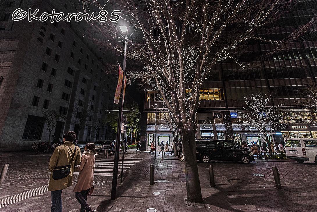 タカラヅカ 20151227