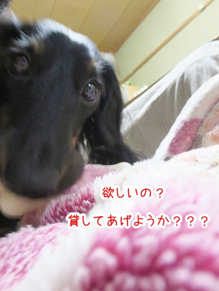 IMG_280106_4.jpg