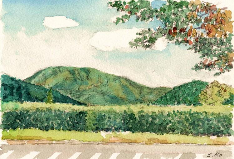 SEから見た伊吹山  (750x509)