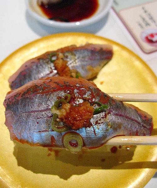 2014_08_03 呉YOUME魚蔵032