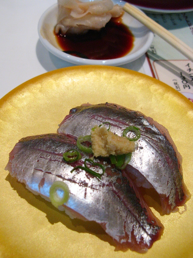 2014_08_03 呉YOUME魚蔵030