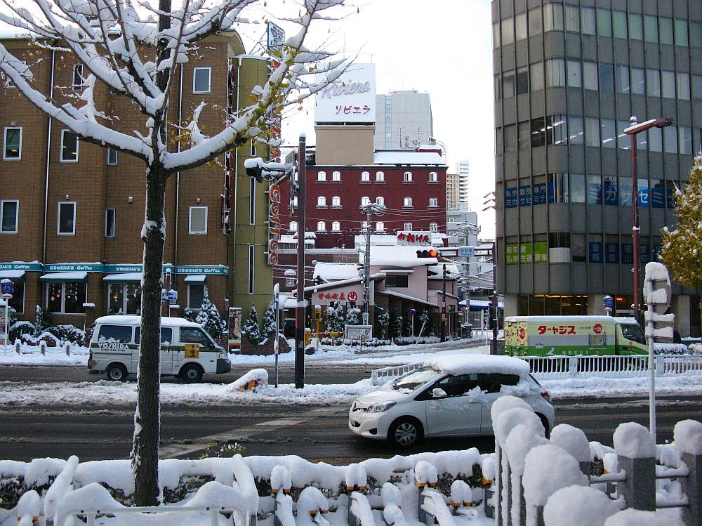 2014_12_18名古屋:大雪 (7)