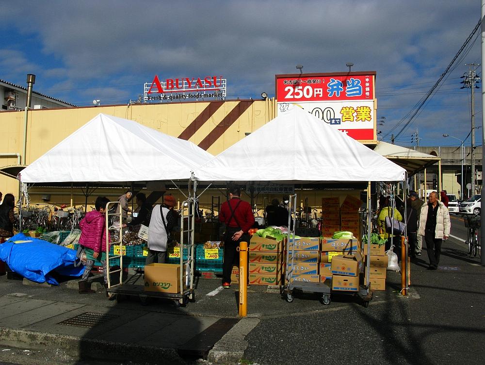 2015_12_28春田:アブヤス (1)