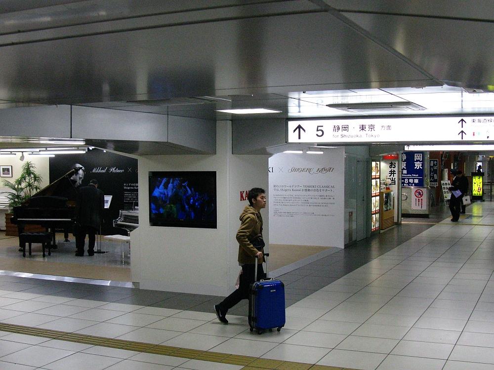 2015_01_08浜松:うどんそば自笑亭- (39)