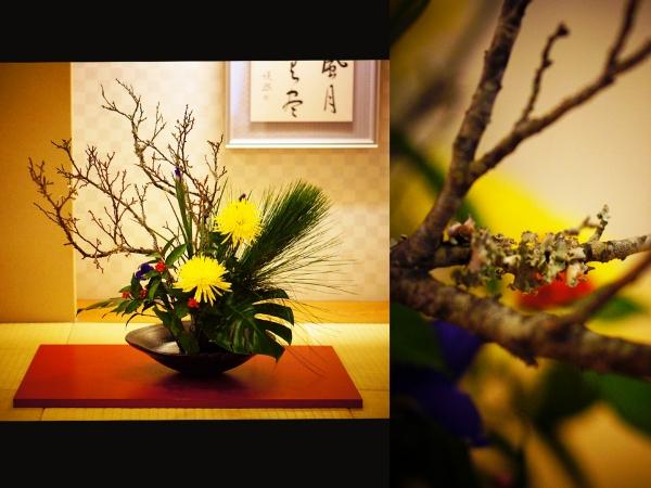 1月の花2