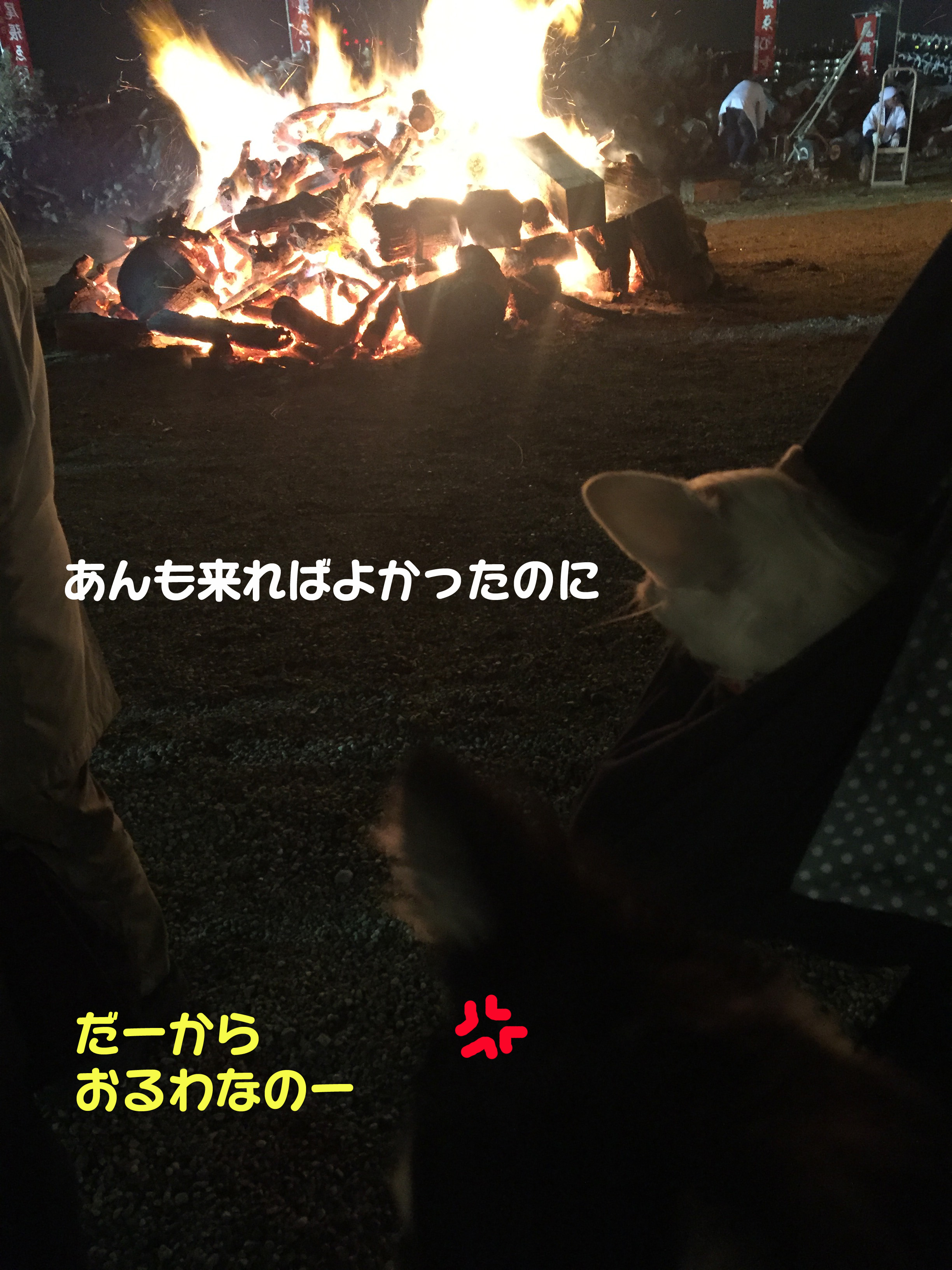 2016_1おるわ