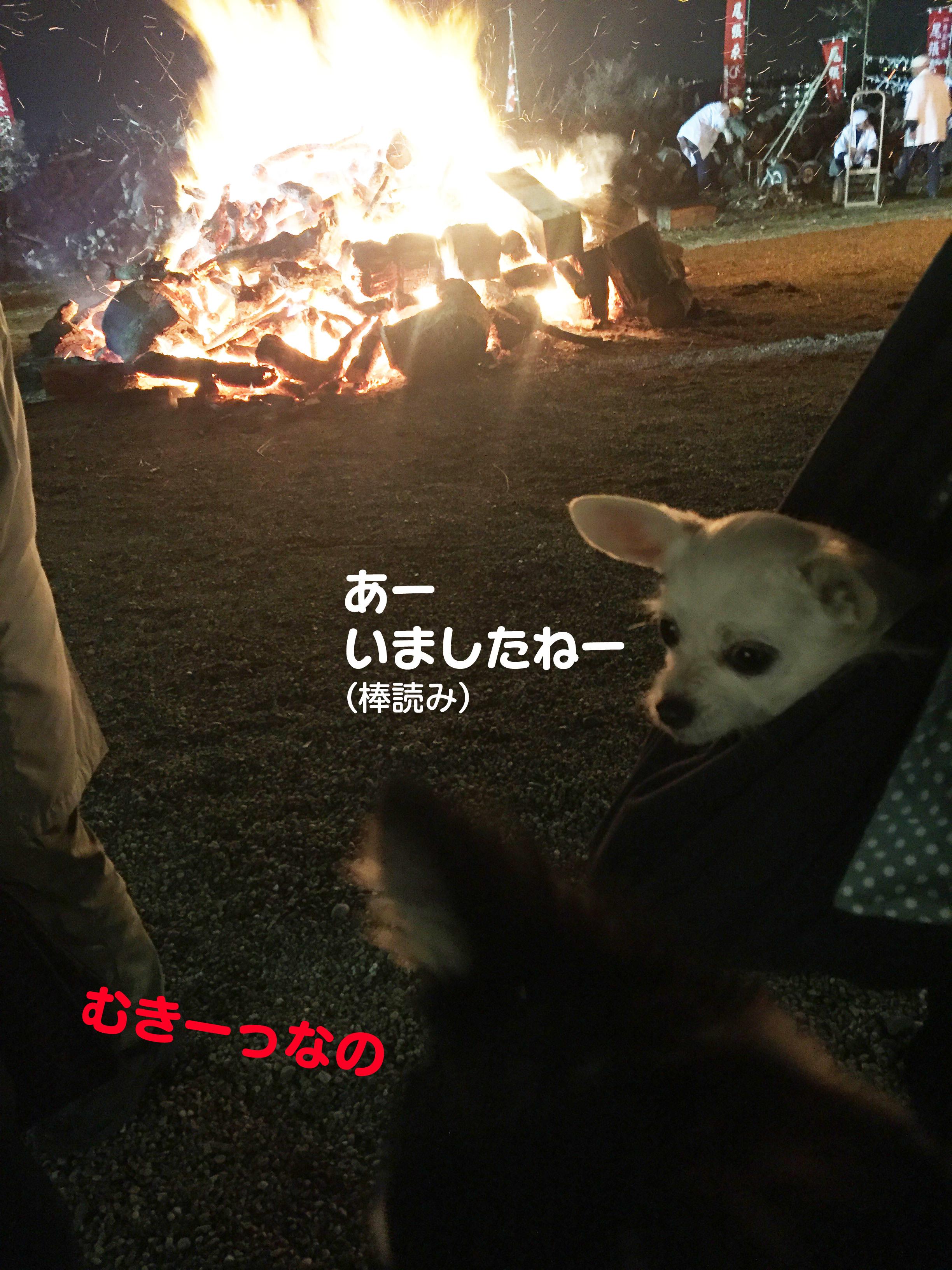 201601むきー