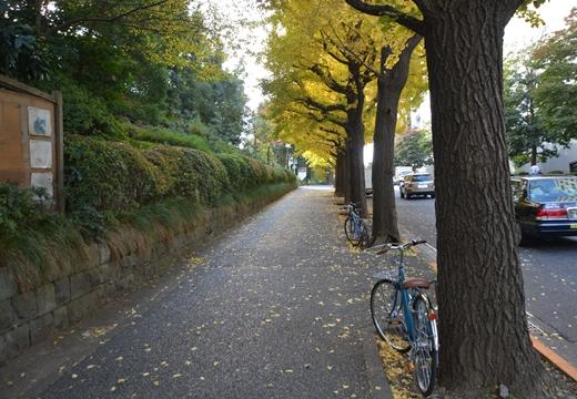 大山道 赤坂 (14)_R