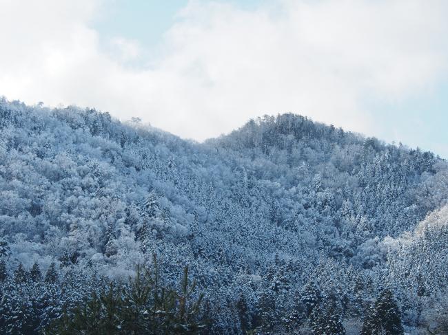 里山の雪景色 2