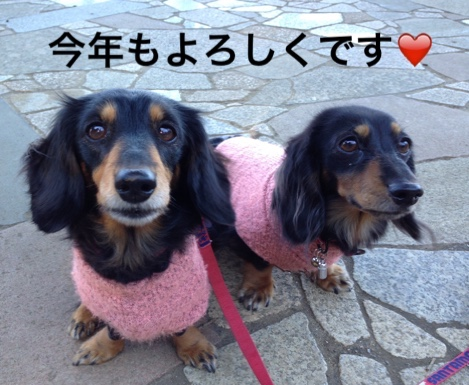 fc2blog_2016010123035739c.jpg