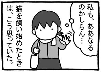 253.jpg