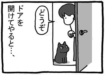 259.jpg