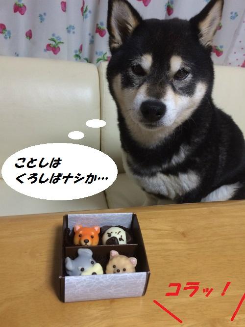 S__6357012Blog.jpg